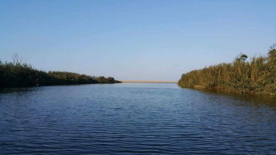 Ağvaの川と海の境界